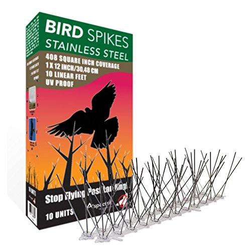 Aspectek acero inoxidable Kit de espigas para pájaros, 10 pies ...