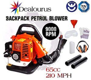 Dealourus - Soplador de hojas de gasolina con mochila de 65cc ...