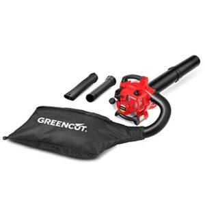 Greencut EBV260BN - Aspirador de cuchilla con ...