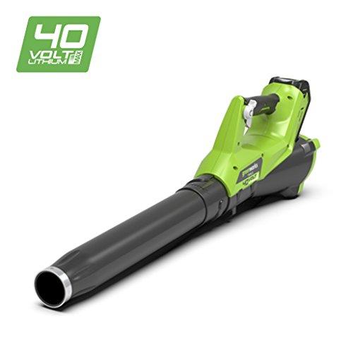 Greenworks 372400807 Ventilador inalámbrico, 40 V, verde