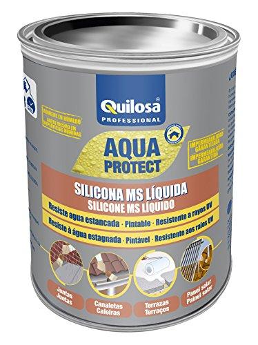 Quilosa T049262 Silicona Ms Líquido, Blanco, 1 kg