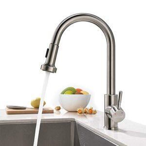 ieGeek Kitchen Faucet Retire el grifo mezclador de la ducha ...