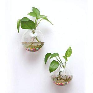 Dkings 6 Piezas Jardineras de vidrio para colgar en la pared, ...