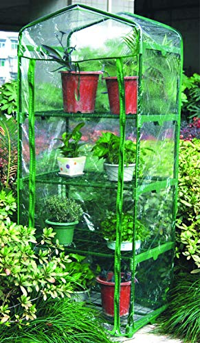 Hamble Distribution - Pequeño invernadero con 4 alturas