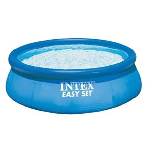 Intex 28112GN - Piscina Easy-Set Set Filtro de Cartucho 1,25...