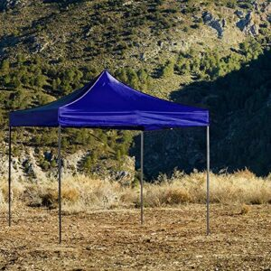 Regalos Miguel - Carpas Plegables 3x3 - Carpa 3x3 Basic - Az...