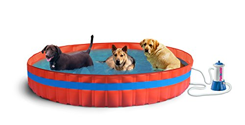 New Plast 3100 K – My Dog Pool Piscina para Perros con Filtr...